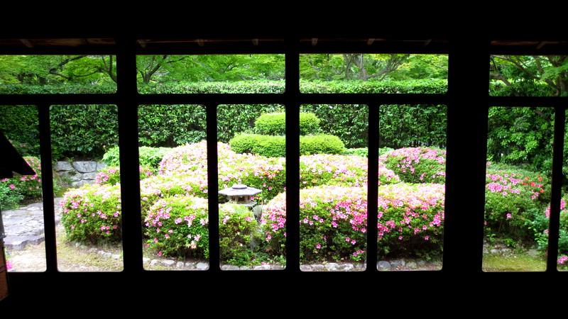 透ける窓枠