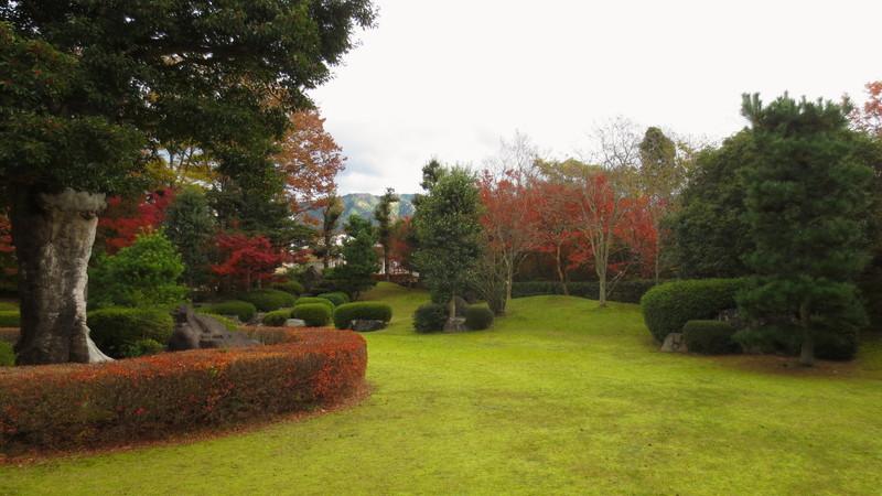 紅葉するお庭